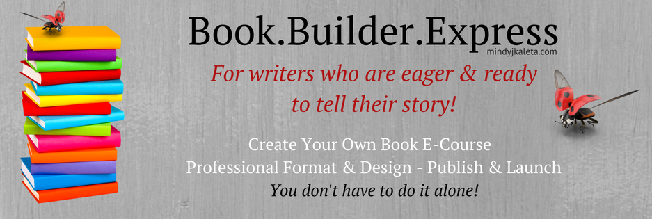 create-your-own-book-professional-format-design-publish-launch-you-dont-have-to-do-it-alone-112016