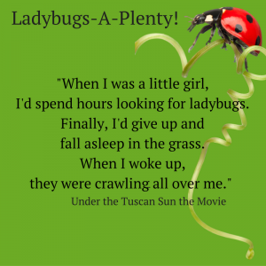ladybugs-a-plenty-quote-1